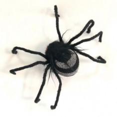Araña Chica X U-                                                               Halloween