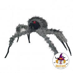 Hal Araña Pollito New X U                                                                         Halloween