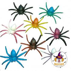 Arañas Chicas X 24 Patrimar Negra/color